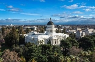 Avian Averting System client installation picture California State Capitol