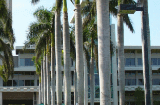Avian Averting System client installation picture University of Miami Richter Law School