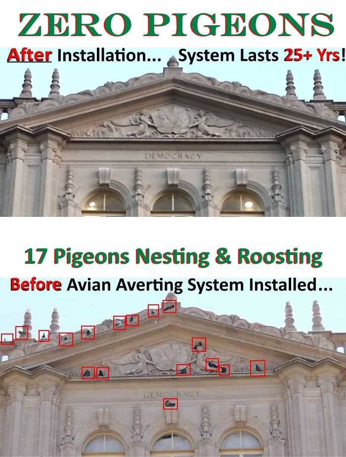 Avian Averting System before and after historical bldg. photo