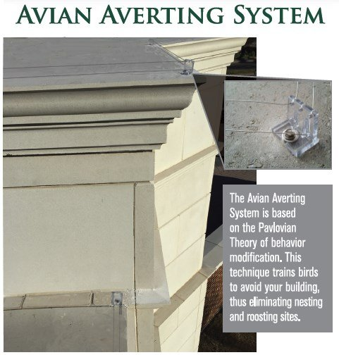 Avian Averting System close up insulator and wire photo
